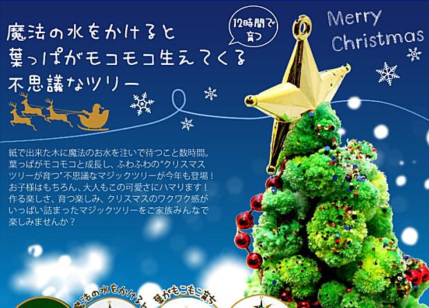 『マジッククリスマスツリー』12時間で育つ不思議なクリスマスツリー